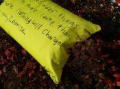 lorraine-osborne-ipromise-cushion